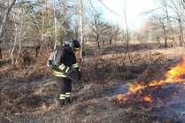 06032015 incendio parco groane foto di matteo turconi (8)