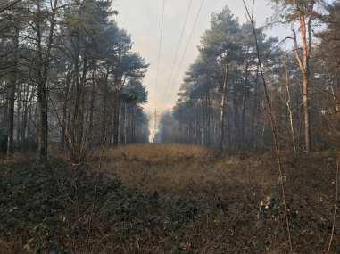 incendio groane 09012019 (3)