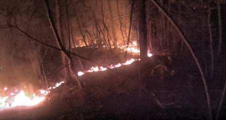 incendio bosco lazzate