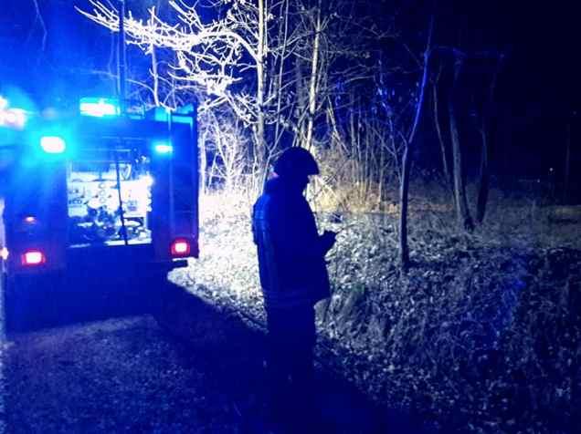 pompieri lazzate vigili del fuoco bosco