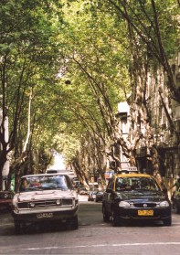 Affordable taxis in leafy streets