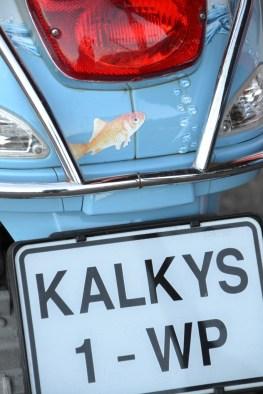 Die beste vis en tjips in die land is by Kalkys op Kalkbaai Hawe