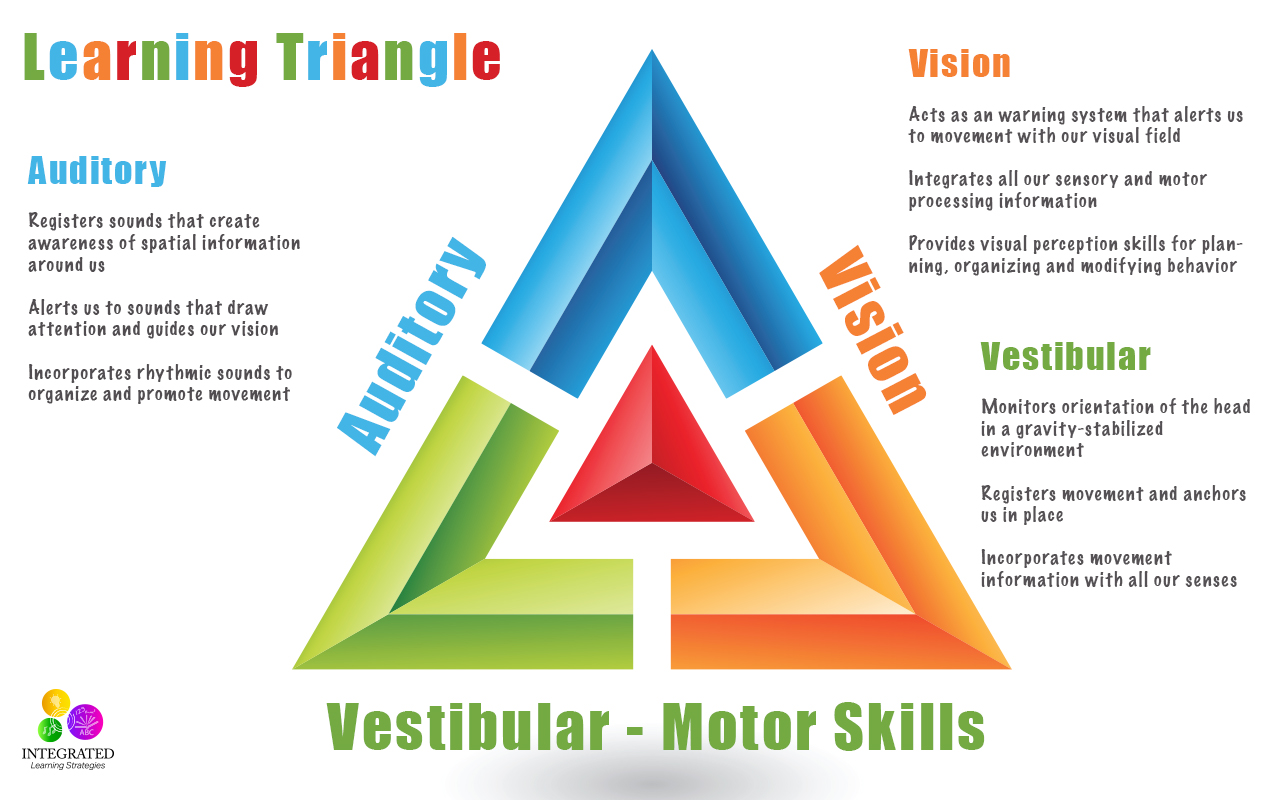 Learning Triangle Without The Vestibular Visual And