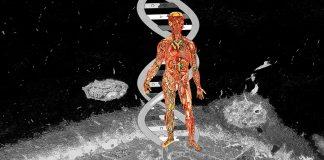 alterazione genetica   artwork by @TV_int
