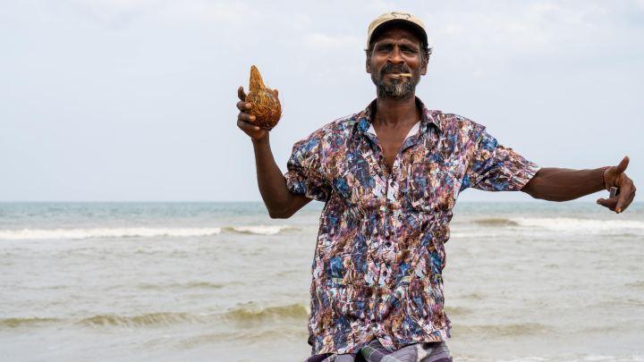 Rasta et noix de coco