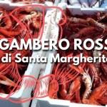 Gambero rosso di Santa Margherita Ligure