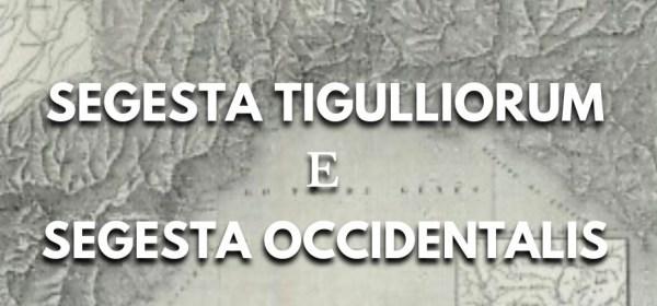 Segesta tigulliorum