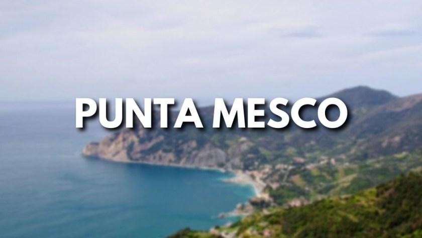 Punta Mesco