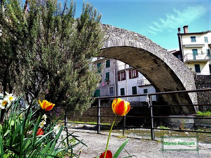 Varese Ligure, Ponte di Grexino