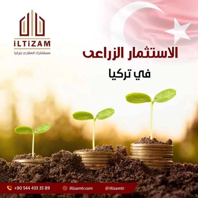 الاستثمار الزراعى فى تركيا