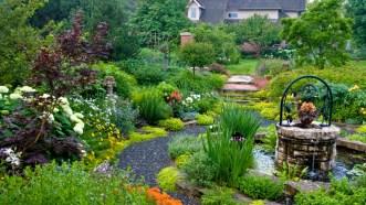 Sunkin Garden