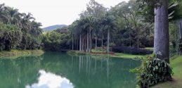 Museu_ Inhotim_Minas_Gerais_Lago_4