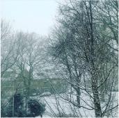 snow1-17
