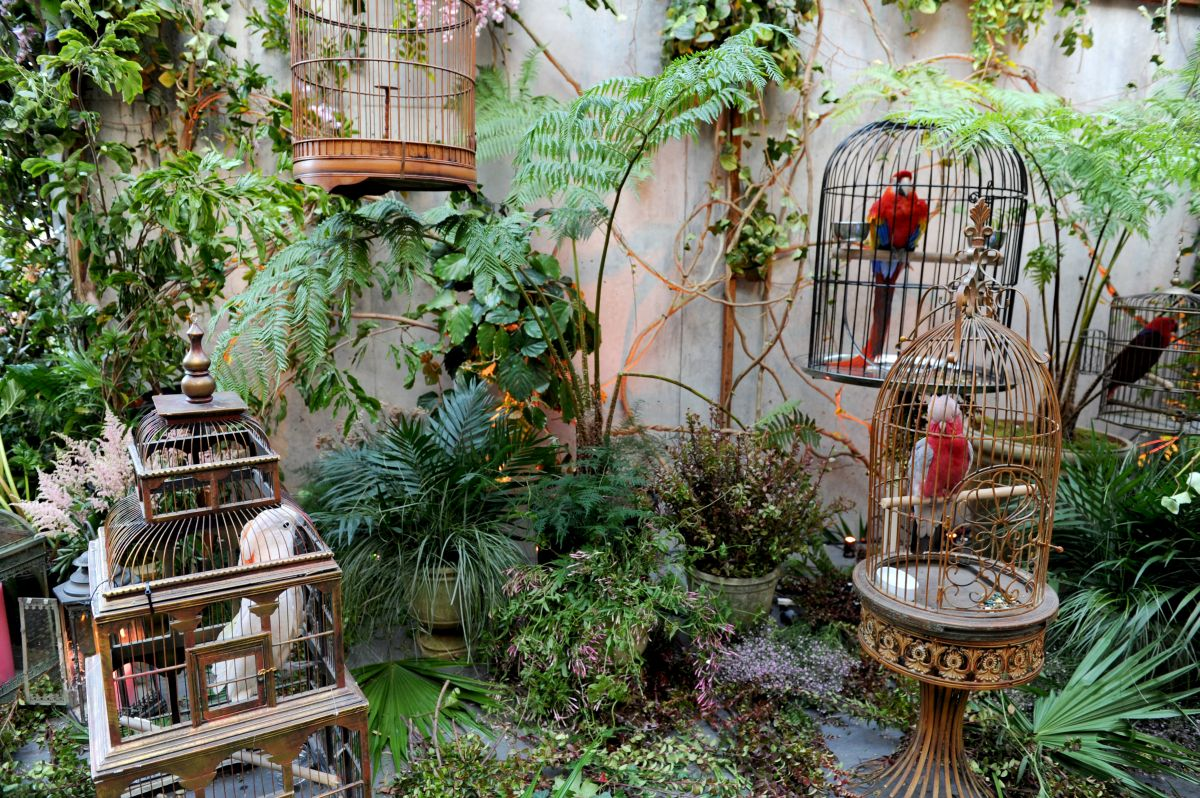 NEW YORK, NY - MAY 02: A view of the live birds on display at the Gucci Bloom Fragrance Launch at MoMA PS.1 on May 2, 2017 in New York City. (Photo by Craig Barritt/Getty Images for Gucci)