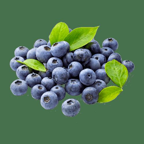 MIRTILLI - IL VERZERATT 1919 - Frutta e verdura a domicilio MILANO