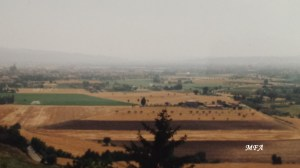Assisicountryside