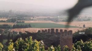valleyAssisi