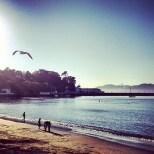 Good Morning San Fransisco; @gianginoble11 Instagram