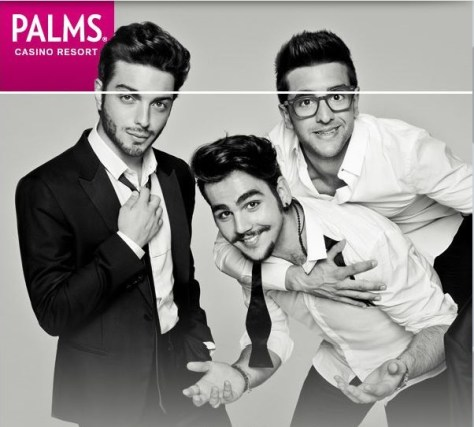 palms 6