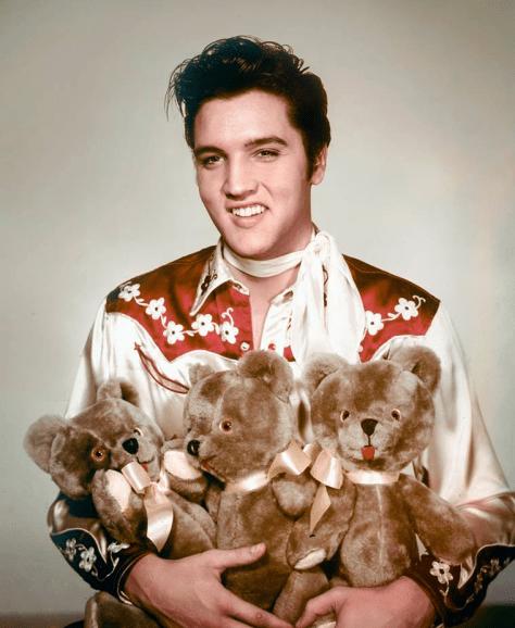 Elvis and Teddy Bears