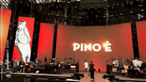 Pino 02