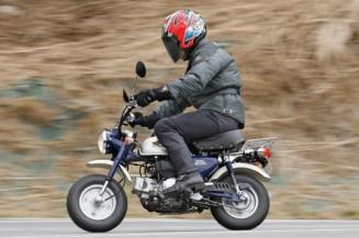 motogiro2014_austria_024_monkey_b