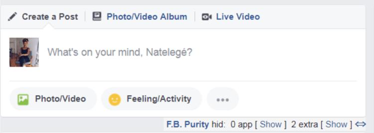facebook-purity