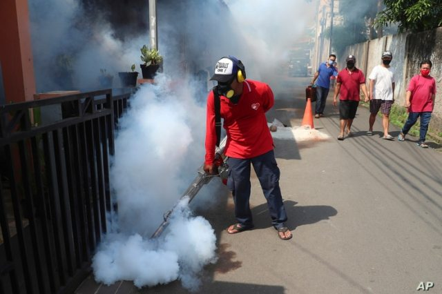 A worker fumigates a neighborhood in an effort to control the spread of dengue fever, amid the new coronavirus outbreak in…