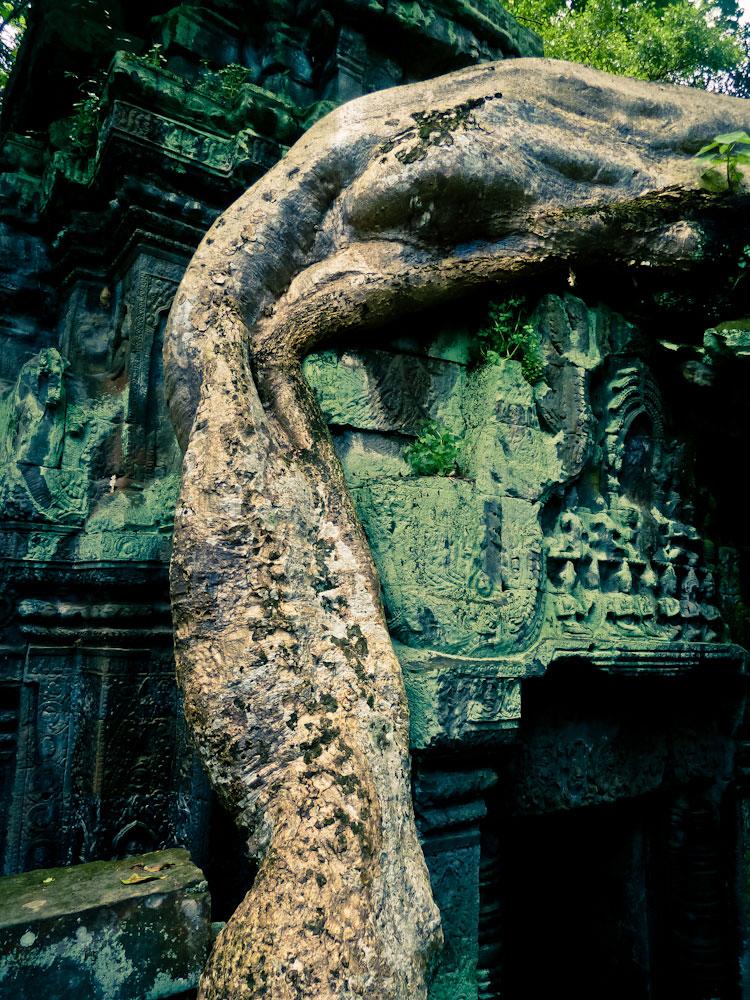 Cambodia (283 von 1242)