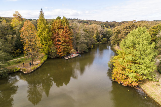 Canlı ağaç müzesi Atatürk Arboretumu'unda sonbahar