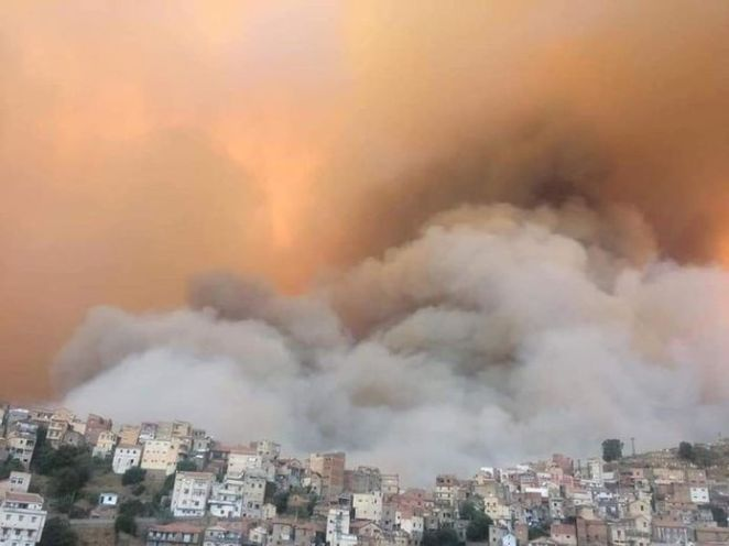 SON DAKİKA: Cezayir'de orman yangınları: 42 kişi hayatını kaybetti! - Haberler 14