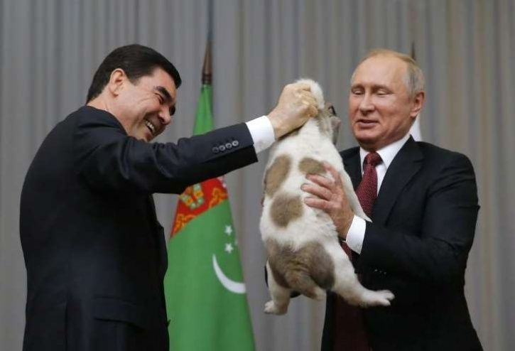 Putin Gets A New Puppy As Birthday Gift From Turkmenistan