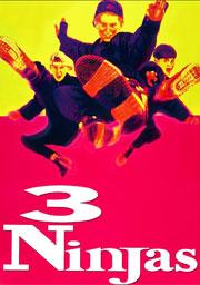 Três Ninjas: Uma Aventura Radical