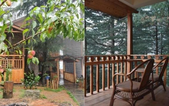 Traditional Boutique Homestay In Kangra Valley District