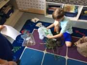 Each scientist worked to create a bird nest.