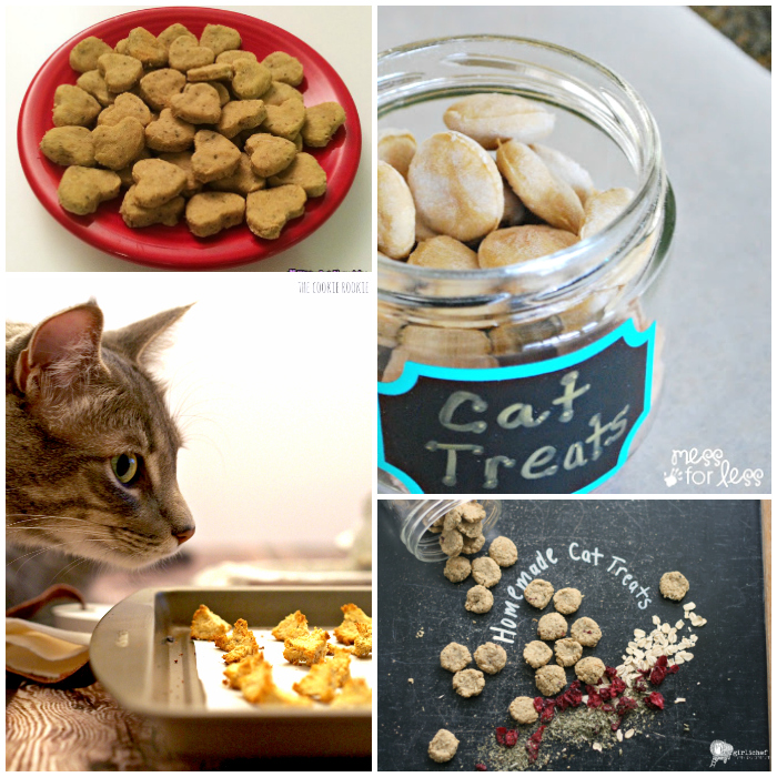 Spoil your fabulous feline with these homemade cat treats.