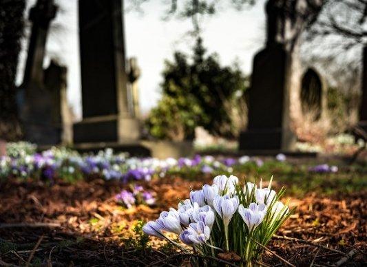 Flores en el cementerio.