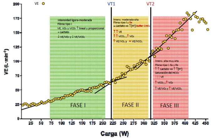 Modelo trifásico de intensidad. Entrenamiento de runninf