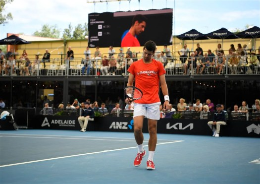 """""""It's Not Easy"""": Novak Djokovic Gives an Update on His ..."""