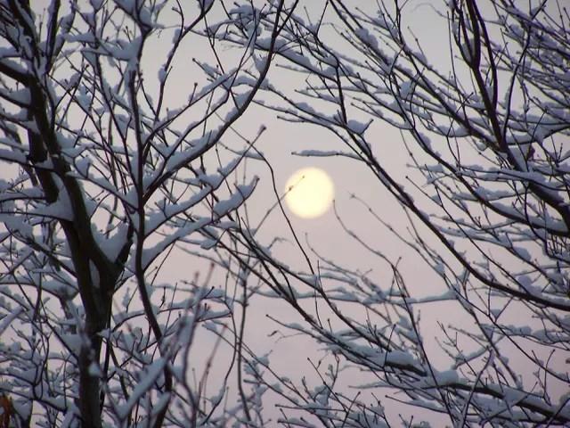 Lune  d'hiver