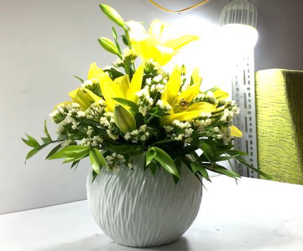 cach cam hoa ly dep, tuoi lau - 8