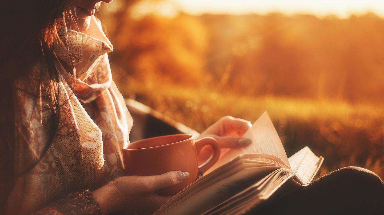 Diese Sechs Krimi Bestseller Bieten Echten Nervenkitzel Stern De