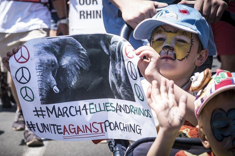非洲民眾抗議不肖之徒為取得象牙而獵殺大象(美聯社)