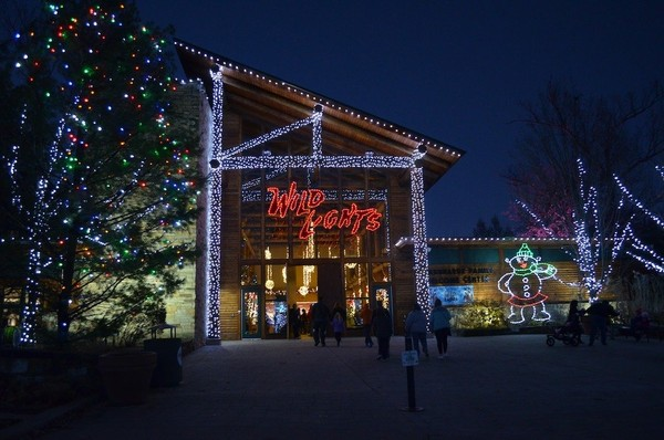 Cleveland Zoo Lights