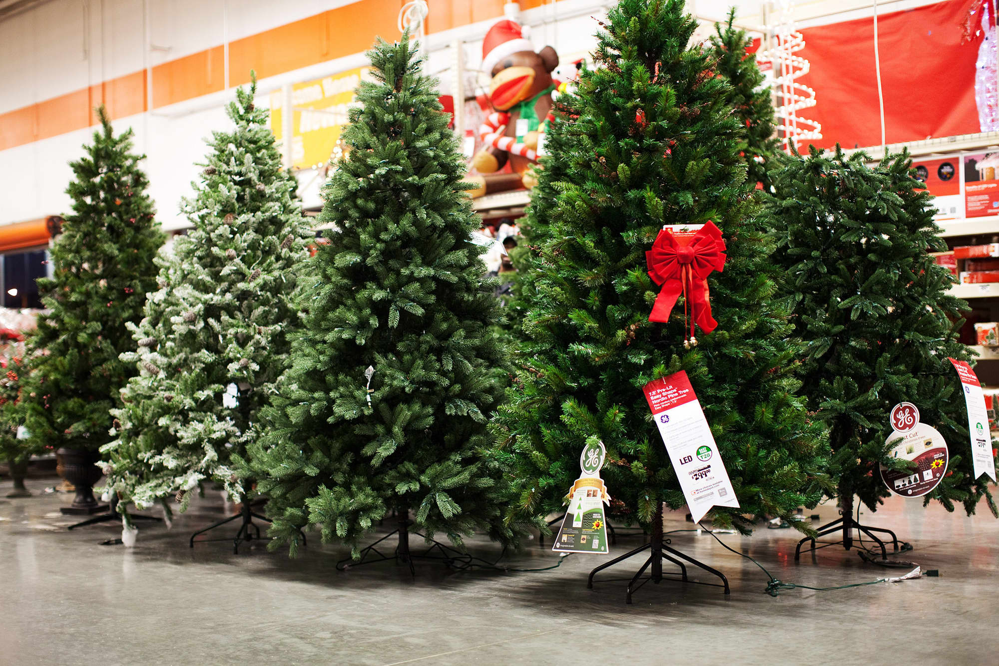 Christmas Tree Prices Rise As Growers Recover From Great Recession