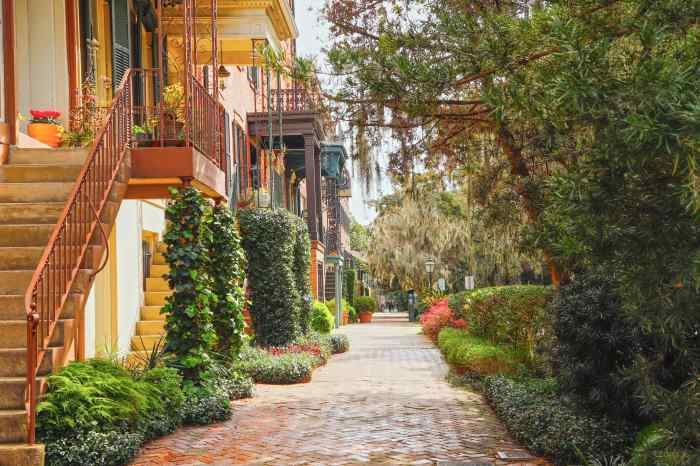 GI: Lush street in Savannah