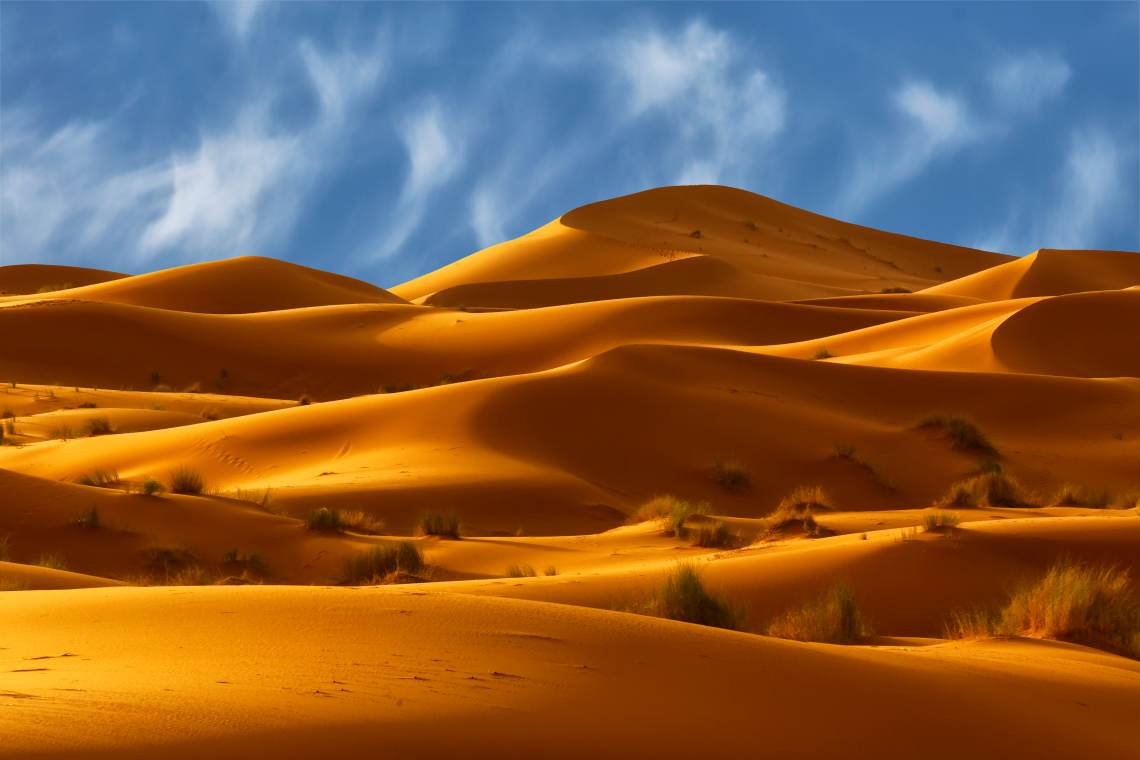 The desert dunes of Morocco.