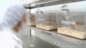 일본 연구팀, 대장 성공한 동물 실험에 소장 기능 부여 : 동아 사이언스