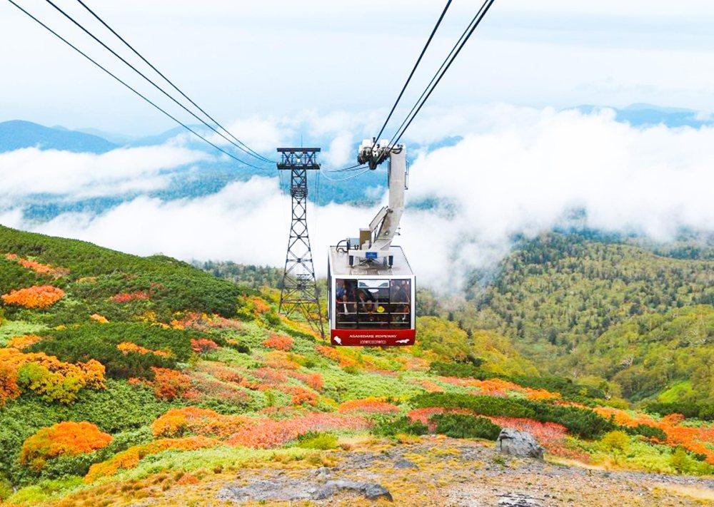 搭乘黑岳纜車登上賞楓名所「黑岳五合目」,遠望秋楓覆蓋連綿山峰。