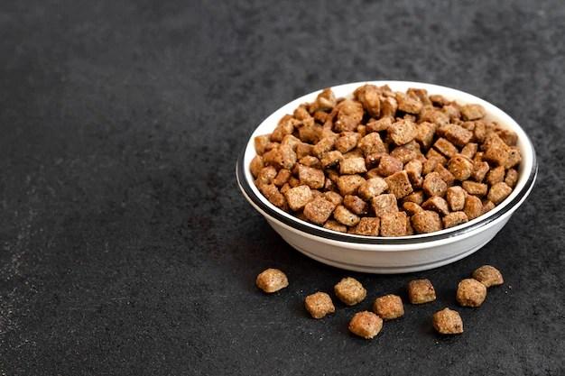 Alimentos para animais de estimação secos em uma tigela de cerâmica